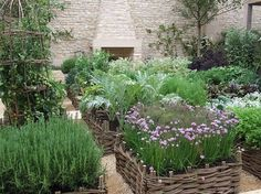 using baskets as individual raised beds.... lovely and tidy collection of herbs and plants.....