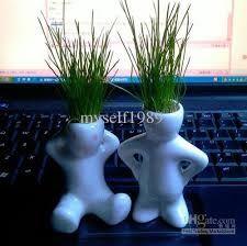 image result for plante bureau