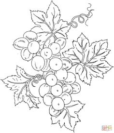 Grape 10 coloring page from Grapes category. Select from 26278 printable crafts of cartoons, nature, animals, Bible and many more. Hand Embroidery Patterns, Quilt Patterns, Embroidery Designs, Fabric Painting, Painting & Drawing, Colouring Pages, Coloring Books, Puzzle Photo, Printable Crafts