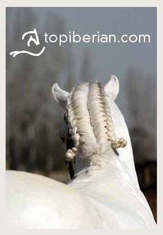 what  is this???? who braids horse hair???......oh wait, I do :) jk