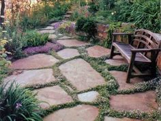 sensory garden smells - plant thyme between pavers for a scented walkway