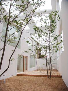 House N by Sou Fujimoto   Oita, Japan.                                                                                                                                                                                 Mais