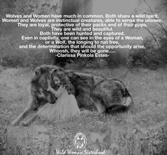 Wolves and Women have much in common. Both share a wild spirit. Women and Wolves are instinctual creatures, able to sense the unseen. They are loyal, protective of their packs and of their pups. They are wild and beautiful. Both have been hunted and captured. Even in captivity, one can see in the eyes of a Woman, or a Wolf, the longing to run free, and the determination that should the opportunity arise, Whoosh, they will be gone….. ✨WILD WOMAN SISTERHOOD™ #WildWomanSisterhood…