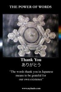Water with the words Thank You taped on to another vessel, then frozen formed this crystal. -Dr. Emoto