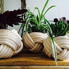 these nautical knot planters. By Instagramer @provincial_macrame