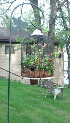 Plant flowers in a birdcage for something kind of whimsical!