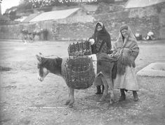 Connemara natives attend to their pannier-draped donkey ca. 1900 (NLI, LROY 04235) http://www.census.nationalarchives.ie/exhibition/galway/economy_society/lroy04235_ConemaraNatives.html