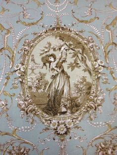 CS273 Mary Rose Collection Cameo Sage Toile Vintage Cotton Fabric Quilt Fabric