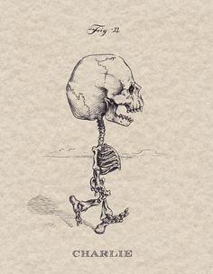 Michael Paulus cartoon x-ray