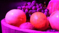 Frutas violeta, 2013 ©Fabiana Prats Krings