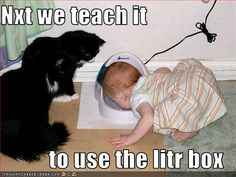 Educating and socialising the young ones... ♡ღ‿ღ♡⌒♡ღ‿ღ♡⌒♡ღ‿ღ♡