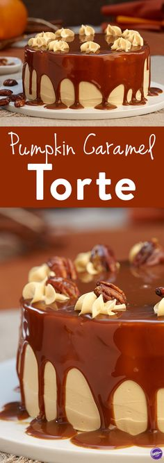 Pumpkin Caramel Torte - Get ready for an amazing texture sensation! This pumpkin caramel torte combines everything you love into one: airy, sweet layers of pumpkin cake, silky buttercream, rich caramel and crunchy candied pecans.