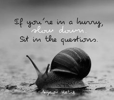 If you're in a hurry, slow down. Sit in the questions ~ Byron Katie