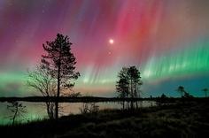 Rovaniemi, Suomi. Aurora Borealis (Northern Lights).