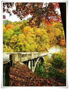 Clifty Falls State Park in Madison, Indiana