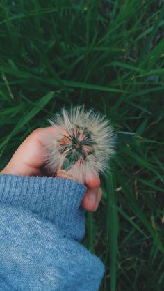 Hand Photography, Aesthetic Photography Nature, Portrait Photography Poses, Wallpaper Nature Flowers, Sunflower Wallpaper, Aesthetic Pastel Wallpaper, Aesthetic Wallpapers, Beautiful Eyes Images, Shadow Photos