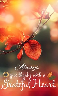 Always give thanks with a grateful heart. © All Rights Reserved by Seven Silvasy Biblical Quotes, Prayer Quotes, Bible Verses Quotes, Bible Scriptures, Spiritual Quotes, Faith Quotes, Favorite Bible Verses, Praise God, Words Of Encouragement