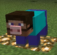 Minecraft NarcisissmCraft
