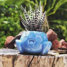 New Oddish planter on Shapeways! This 3D model is printed in porcelain and…
