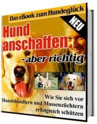 Hund anschaffen - aber richtig! (eBook)