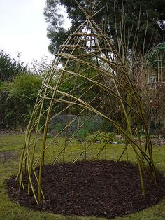 living willow sculptures | living willow den.  Need to try this effect this spring!