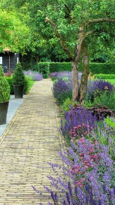 46 best front yard and backyard landscaping ideas for your home 34 - All For Garden Garden Paths, Outdoor Gardens, Beautiful Gardens, Garden Design, Garden Borders, Outdoor, Cottage Garden, Dream Garden, Backyard Landscaping