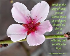 The Way of Love~ Ephesians 5:3~