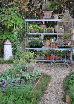lovde gardening
