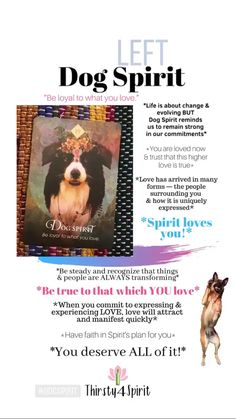 Dog Spirit reminds you to stay committed to the things you love! Get your own reading —> CLICK THE PICTURE :) Tarot Card Spreads, Power Animal, Spiritual Meaning, Love Now, No Rain, Oracle Cards, Spirit Guides, Life Coaching, Tarot Decks
