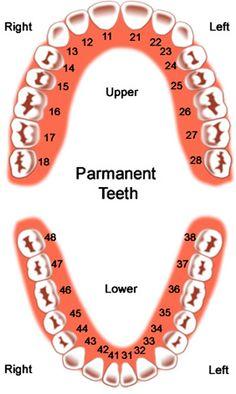Dental Marmaris - remove mercury