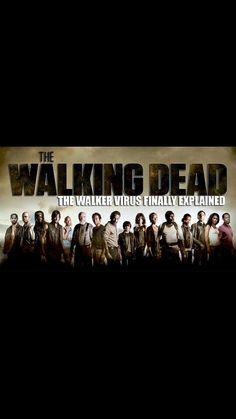 The Walking Dead Season 4 Sub Indo : walking, season, Walking, Costume, Ideas, Dead,, Costumes,