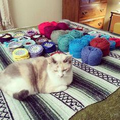 Ravelry: CurlySam's Granny Circle Blanket