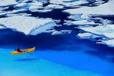 Floating in Blue - Glacier Bay, Alaska