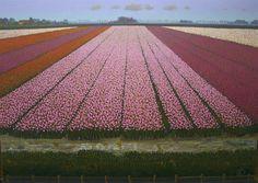ton dubbeldam: tulips of holland, dutch
