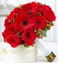 All red gerber daisies and red rose bouquet