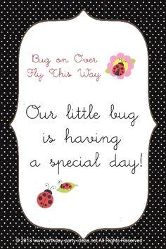 Lady bug birthday pa