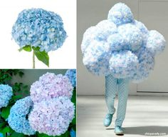 'Very-flowery' Walter Van Beirendonck