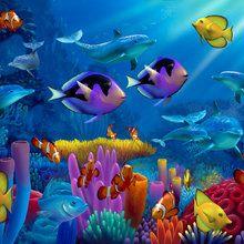 Mural de pared - Ocean of Color