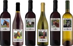 TAS could not operate without the generosity of our loyal volunteers who assist with fundraising and placement of rescued Saddlebreds throughout the United States. Our mission and goal is to create new roles for these horses by opening new doors for this breed to develop and excel.    Share a Bottle of Wines and Share Our Story...  www.BenefitWines.com/rescueme