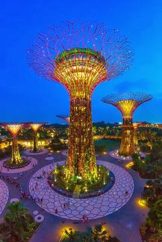 The Super Tree (Singapore)