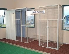 Outdoor Cat Run On Pinterest Cat Enclosure Outdoor Cats