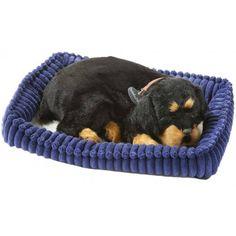 Rottweiler Perfect Petzzz Perfect Petzzz zijn levensechte knuffels en ademen écht! EUR 28.99 Meer informatie