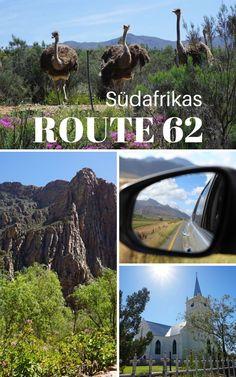 Ein Roadtrip auf der Route 62 durch die Halbwüste Kleine Karoo in Südafrika ist die perfekte Ergänzung für deine Rundreise im Western Cape! Denn abseits vom Touristenrummel erwartet dich eine tolle Landschaft mit fruchtbaren Tälern, Bergpässen, kleinen Wasserfällen und neugierigen Straußen. Nicht zuletzt ist die Route 62 die längste Weinroute weltweit! #Südafrika #Route62 #KleineKaroo #Oudtshoorn #Robertson #WesternCape #Roadtrip Roadtrip, Van Life, Safari, Ocean, Camping, Kind, Nature, Travel Destinations, Hotels