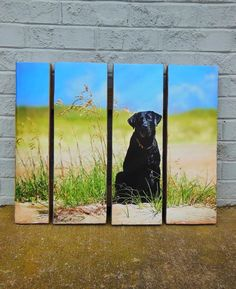 Who wouldn't want to put their best friend on a beautiful wooden pallet?!  Head over to our Facebook page simply by clicking this photo to learn how you can put your pup on a pallet today!