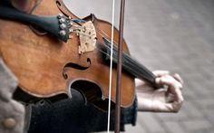 musica violino music