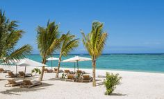 Take a pictorial tour of The St. Plan your honeymoon or family vacation at our beachfront hotel in the south of Mauritius. Honeymoon Hotels, Best Honeymoon, Beach Hotels, Hotels And Resorts, Romantic Destinations, Travel Destinations, Tanzania, Kenya, Mauritius Resorts