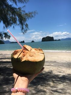 Drinking coconut milk in Langkawi, Malaysia – next time I'll bring my own reusable straw! Sky Bridge, Jet Skies, Small Restaurants, Perth Australia, Paradise On Earth, Amazing Sunsets, Rooftop Bar, Underwater World, Small Island
