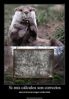 Si mis cálculos son correctos (FOTO Desmotivaciones)