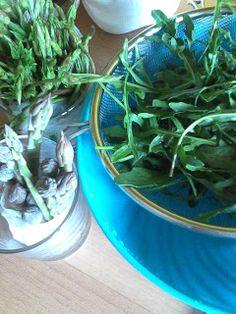 Tante Buone Ricette: Risotto agli asparagi