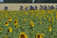 Tour de France 2013 .....Stage 15